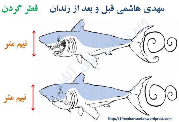 مهدی هاشمی قبل و بعد از زندان