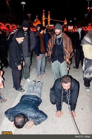 خریت نه تنها علف خوردن است! قلاده بستن به خود و سگ شدن برای حسین در خلال مراسم مذهبی اربعین!