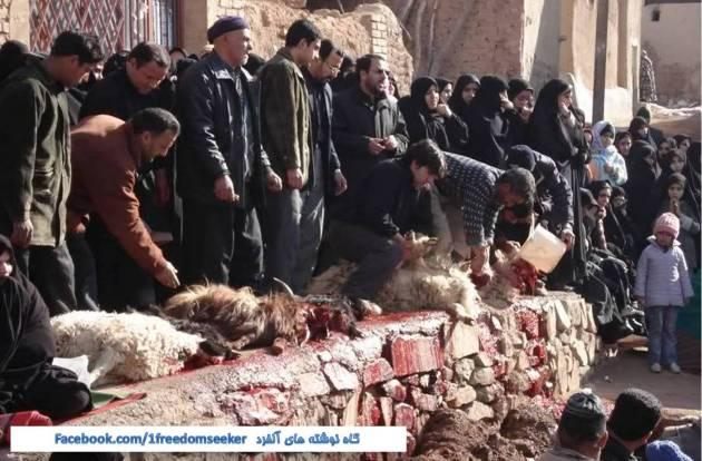 """ریختن خون حیوان در انظار عمومی و از جمله جلوی چشم کودکان در کشورهای اسلامی در روز """"عید قربان""""!"""